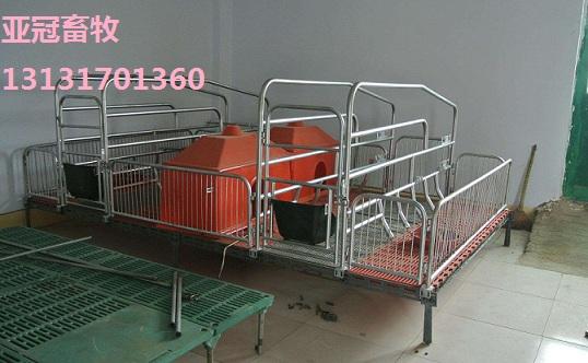 亚冠01双体母猪产床厂家