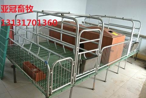 亚冠01双体母猪产床价格