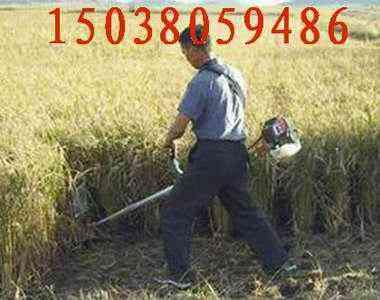 供应小麦收割机