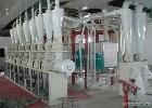 供应6FGL玉米深加工设备