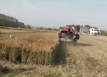 丹阳木森农机半喂入水稻收割机扩散器展示