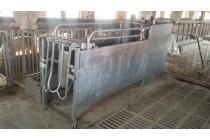 杭州母猪自动饲喂系统|母猪智能喂养设备