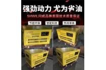 智能化全自动20kw汽油发电机