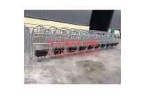 母猪定位栏厂家直销批发限位栏