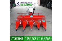 小麦割晒机 稻麦收割机 收割机厂家直供