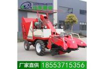 玉米收割机 玉米收割机工作原理 收割作业农机具