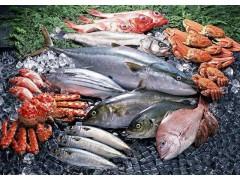 2021苏州(太湖)国际渔业博览会