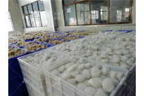 大型酸辣粉设备 碗装粉丝机生产过程