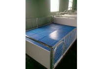 大连仔猪保育床塑料漏粪地板 仔猪电热板仔猪保温箱